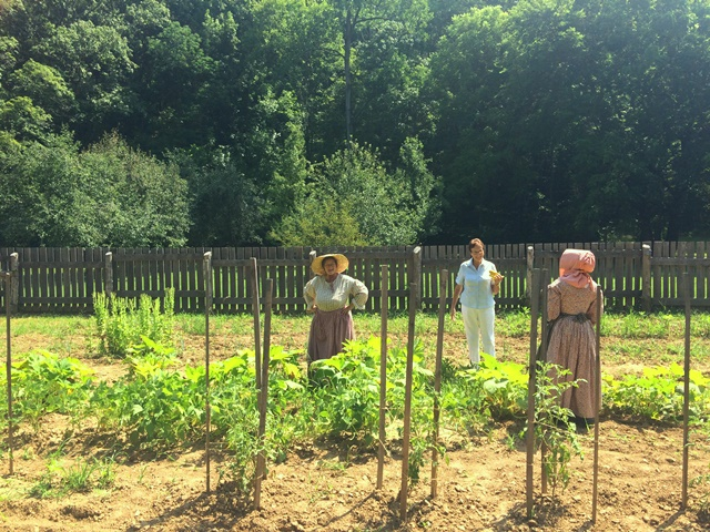 Summer garden work at the Homeplace 1850's Farm