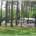 Camping at Hillman Ferry