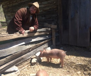 One of our interpreters with our Tamworth piglets. Staff photo