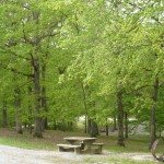 Twin Lakes Basic Campground