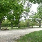 Demumbers Basic Camping Area