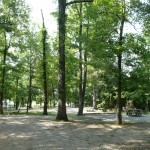 Gatlin Point Self-Service Campground