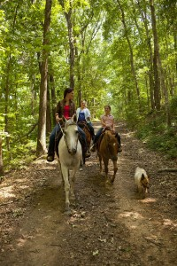 Riding Wranglers Horse Trails