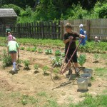 Children's Day on the Farm at Homeplace
