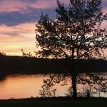 Honker Bay Sunset
