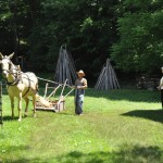 Step back in time at the Homeplace