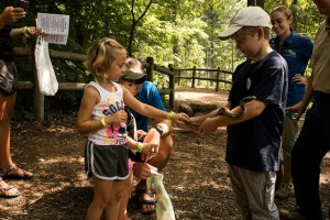 Get up close and personal with some cool critters at Woodlands Nature Station