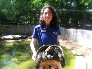Woodlands Nature Station provides visitors with a close-up view of some native animals here at Land Between The Lakes.