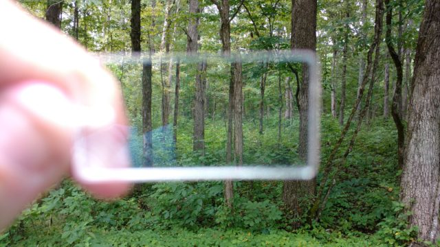 "Looking through a prism to tell if surrounding trees are within a ""plot."" Photo by Yvonne Helton"