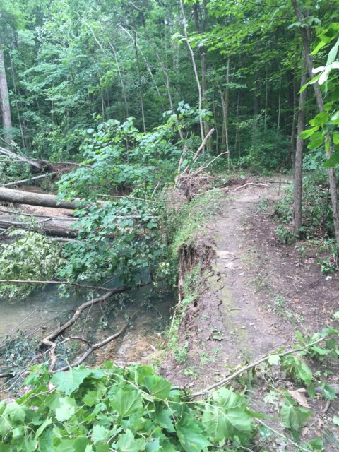 North-South Trail Storm Damage, July 2016